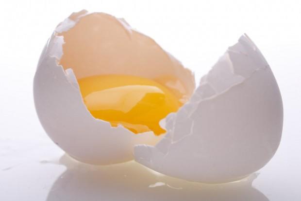 yumurta-besin